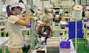 Rộng cửa đón vốn FDI, vẫn lo cho doanh nghiệp Việt