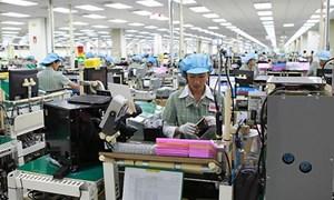 Việt Nam xuất khẩu sang Brazil những mặt hàng chủ lực nào?