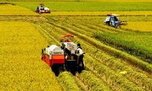 Giải pháp tái cơ cấu nông nghiệp từ góc nhìn chuyên gia