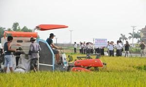 Tỉnh Lâm Đồng: Hoạt động khuyến nông phát triển vượt bậc