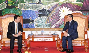 Bộ trưởng Đinh Tiến Dũng tiếp Giám đốc quốc gia ADB tại Việt Nam