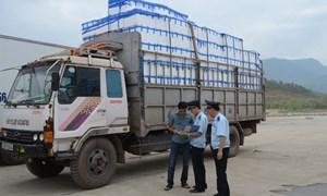 Tạo thuận lợi tối đa cho doanh nghiệp xuất khẩu vải thiều