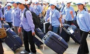 Xuất khẩu lao động: Siết chặt quản lý để giữ thị trường