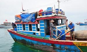 Đóng mới tàu cá có thể được hỗ trợ tới 7,3 tỷ đồng