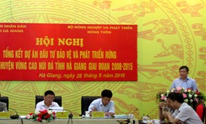 Hỗ trợ gần 12 nghìn tấn gạo cho dự án phát triển rừng tại Hà Giang