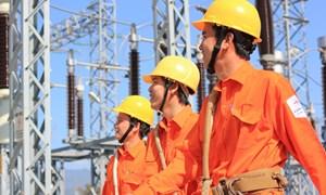 Tổng công ty Điện lực miền Bắc có Tổng giám đốc mới