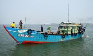 Hiệu quả từ chính sách vay vốn đóng mới tàu cá