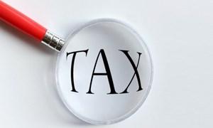 Thời hạn nộp thuế hàng gia công chuyển đổi mục đích sử dụng