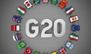 Thúc đẩy tăng trưởng – tâm điểm của G20 và APEC