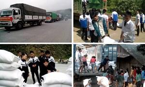 Xuất cấp bổ sung 103,635 tấn gạo dữ trữ quốc gia hỗ trợ học sinh