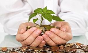 Tỷ lệ bảo đảm an toàn vốn của tổ chức tài chính vi mô