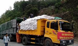 Kịp thời xuất cấp 3.772,59 tấn gạo DTQG hỗ trợ học sinh và nhân dân trong dịp giáp hạt