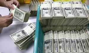 Vẫn được vay ngoại tệ để thanh toán trong nước đến hết năm 2016