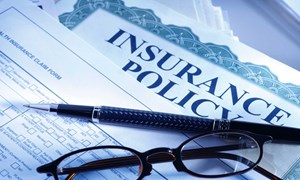 Điều kiện thành lập công ty trách nhiệm hữu hạn bảo hiểm