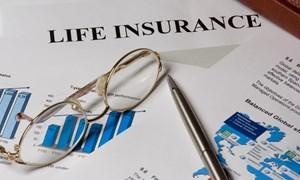 Bảo hiểm đầu tư trở lại nền kinh tế hơn 171 nghìn tỷ đồng