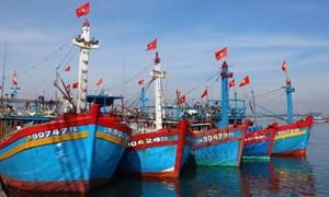 Đã có 14.977 tàu cá tham gia bảo hiểm
