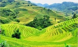 Chính sách hỗ trợ đất ở, đất sản xuất cho đồng bào dân tộc thiểu số
