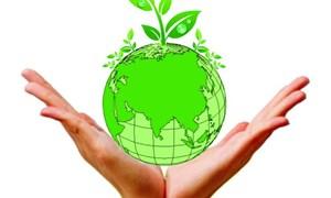 Hoạt động, dự án về môi trường nào được chi từ ngân sách địa phương?