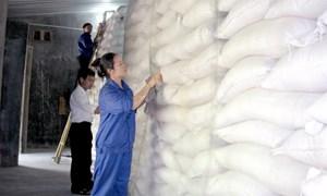 Hỗ trợ hơn 1.800 tấn gạo dự trữ cho học sinh các tỉnh miền Trung