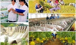 Doanh nghiệp có dự án nông nghiệp ưu đãi đầu tư được giảm 70% tiền sử dụng đất