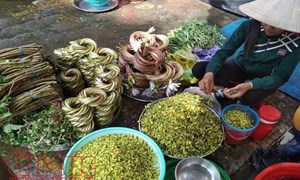 Hút hồn chợ quê mùa nước nổi ở Đồng Tháp Mười