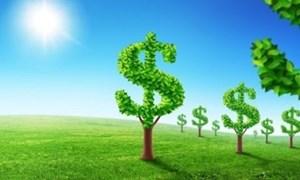 Thúc đẩy kinh tế xanh: Chỉ vốn là chưa đủ
