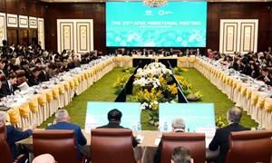 Việt Nam đã và đang hòa vào các nỗ lực chung của APEC
