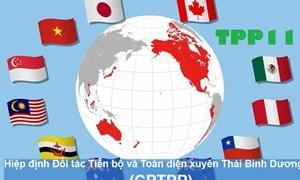 CPTPP: Tạo động lực mới đối với cải cách trong nhiều lĩnh vực