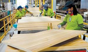 Xuất khẩu gỗ sang EU có thể đạt 1 tỷ USD vào năm 2020