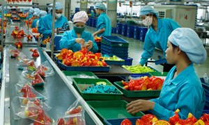 Vốn hỗ trợ phát triển kinh tế tư nhân