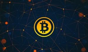 Bitcoin mất 44 tỷ USD giá trị trong tháng 1