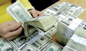 Dự trữ ngoại hối lên mức kỷ lục 57 tỷ USD