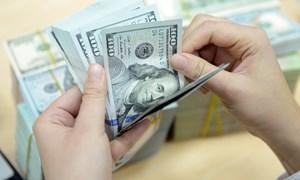 Tỷ giá trung tâm quay đầu giảm, giá USD ngân hàng đi ngang