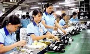 Nhiều yếu tố thuận lợi cho xuất khẩu da giày