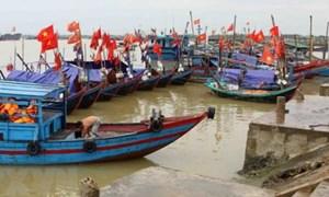 Nhiều kết quả trong khắc phục hậu quả sự cố môi trường biển