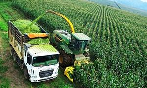 Xây dựng chiến lược cho nông nghiệp hữu cơ