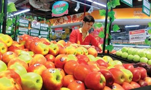 Mua sắm hàng hóa trực tuyến: Thị trường bán lẻ có nhiều đổi thay?
