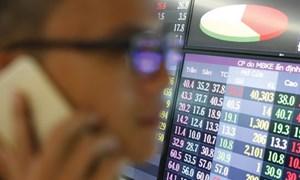 Cổ phiếu ngân hàng dẫn dắt thị trường