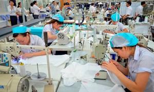 Thị trường nhập khẩu dệt may ngày càng khó tính