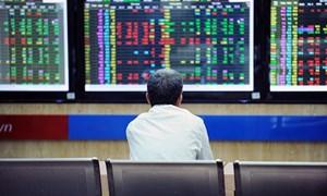 SK Group Hàn Quốc đã chi gần 11.000 tỷ đồng mua 110 triệu cổ phiếu MSN?