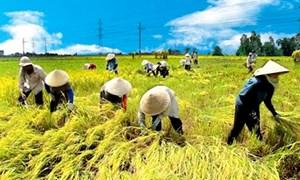 Định hướng, giải pháp tăng cường và nâng cao hiệu quả đầu tư công cho nông nghiệp, nông dân và nông thôn