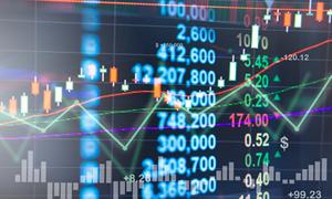 Năm 2019, giao dịch thị trường cổ phiếu niêm yết HNX giảm 39%