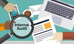 Không tăng biên chế làm công tác kiểm toán nội bộ đối với cơ quan nhà nước