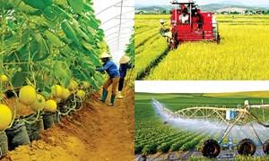 Triển vọng phục hồi của nông nghiệp thực phẩm