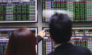 Tháng 5, HNX-Index tăng 12,81%