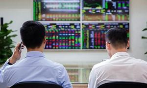Đã có 14 doanh nghiệp chuyển giao dịch cổ phiếu từ HOSE sang HNX