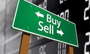 VN-Index giảm, sự hào hứng của nhà đầu tư vẫn tăng