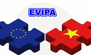 """Hiệp định EVIPA: """"Đón lõng"""" sự dịch chuyển của dòng vốn đầu tư quốc tế"""