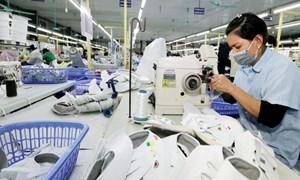 Đơn hàng dồn dập trở lại, da giày hồi phục sản xuất