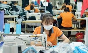 Điều chỉnh cách tiếp cận hỗ trợ cải tiến năng suất và chất lượng sản phẩm hàng hóa doanh nghiệp trong bối cảnh mới